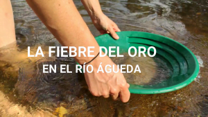 La fiebre del oro en el río Águeda